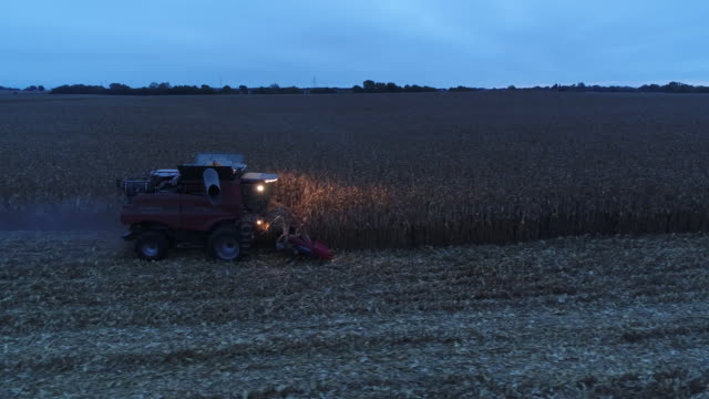 corn harvest and grain elevator operations in sheffield illinois united states on tuesday oct 2 2018 - sheffield stock videos and b-roll footage