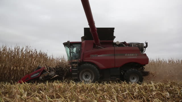 Corn harvest and grain elevator operations in Sheffield Illinois United States on Tuesday Oct 2 2018