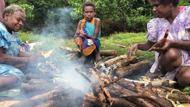vidéos et rushes de corn is cooked to sell at a local farmer's market on december 06 2019 in tanna vanuatu 25 percent of vanuatu's 276000 citizens lost their homes in... - océan pacifique sud