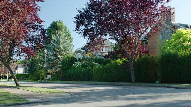 corner of tree-lined street, suburban neighborhood; vancouver, b.c. canada - canada stock videos & royalty-free footage