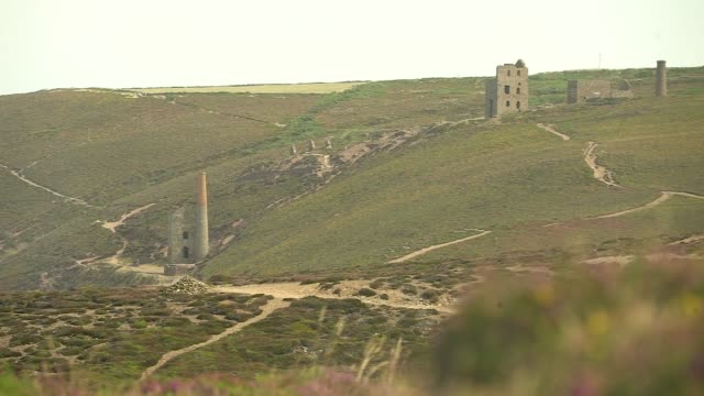 general views england cornwall porthtowan ext gvs of sea and coastline seen from clifftop / close shot heather / engine house ruins / bv people... - heather stock videos & royalty-free footage
