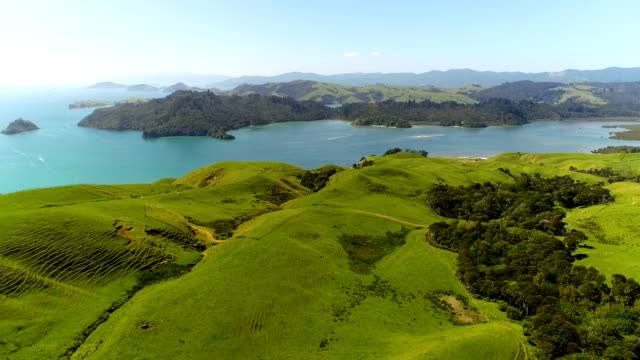 coromandel aerial views - mountain range stock videos & royalty-free footage