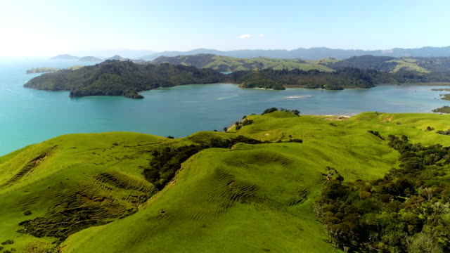 coromandel aerial views - new zealand stock videos & royalty-free footage