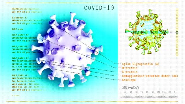 coronavirus disease. 3d model covid-19 - rna stock videos & royalty-free footage