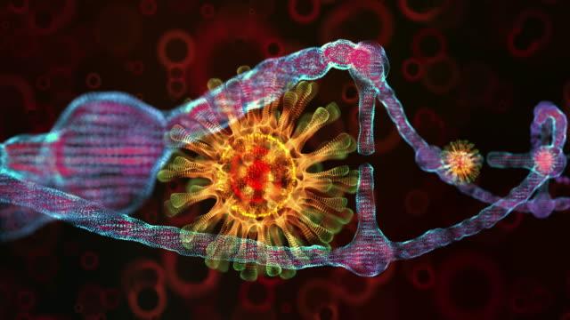 coronavirus dna loop - micro organism stock videos & royalty-free footage