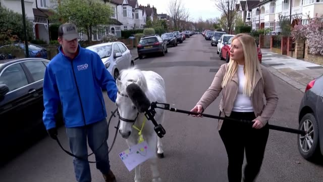 driveway dance classes and stockport spiderman help to entertain during lockdown england south west london ext wiz the pony and james wiseman... - birthday stock videos & royalty-free footage