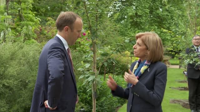 health ministers planting trees and matt hancock interview; england: oxford: oxford botanic garden and arboretum: ext gvs matt hancock mp patting... - plant stock videos & royalty-free footage