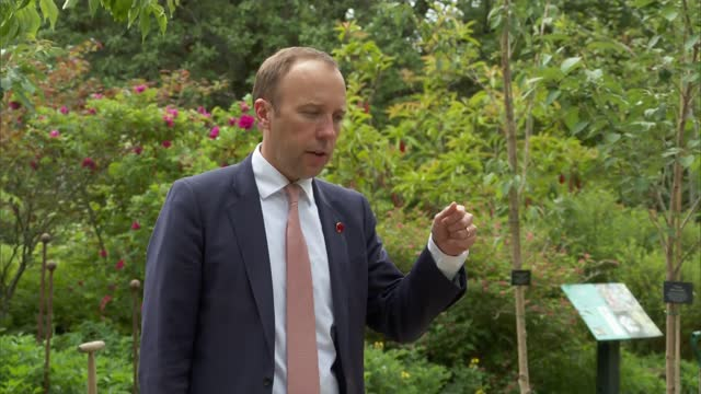 health ministers planting trees and matt hancock interview; england: oxford: oxford botanic garden and arboretum: ext gvs matt hancock mp along with... - plant stock videos & royalty-free footage