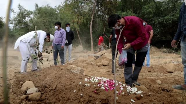 growing calls for full national lockdown in india; india: delhi: jadid qabristan cemetery: ext weeping relative of coronavirus victim at graveside... - petal stock videos & royalty-free footage