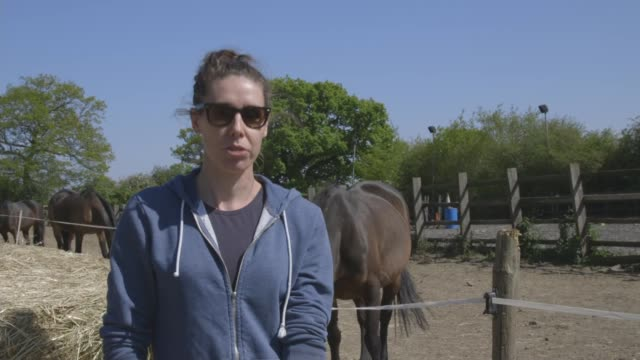 equine therapy centre in edgware sees huge demand for services england london edgware strength and learning through horses equine therapy centre int... - barn stock videos & royalty-free footage