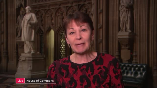 number of confirmed cases in uk rises to 9 after woman in london tests positive england london gir int reporter to camera caroline lucas mp live 2way... - cathy newman stock videos & royalty-free footage