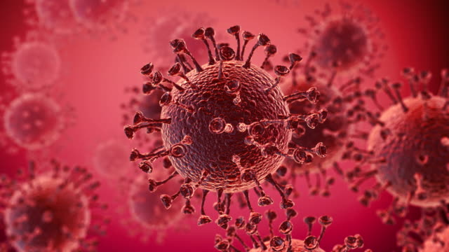 coronavirus - t cell stock videos & royalty-free footage