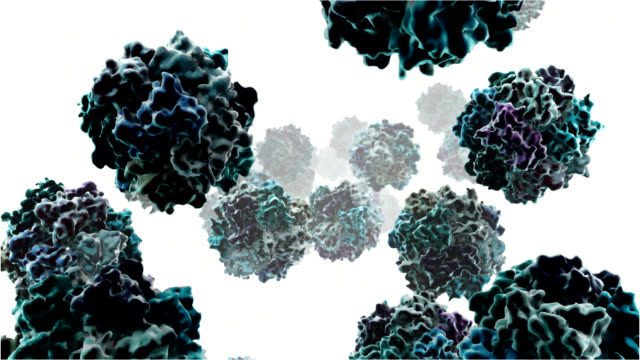 sars coronavirus - biomedical animation stock videos & royalty-free footage