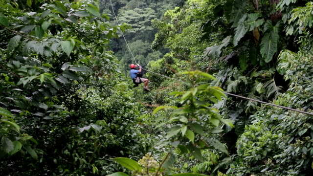 costa rica, nature and parks - ökotourismus stock-videos und b-roll-filmmaterial