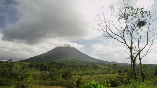 costa rica, scenic view of arenal volcano - bare tree stock videos & royalty-free footage