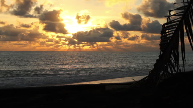 Costa Rican black sand beach dramatic sunset