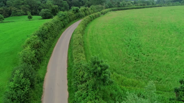 cotswolds countryside, england - single track stock videos and b-roll footage