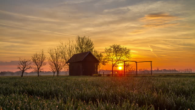 t/l cottage in the field at dawn - shed stock videos & royalty-free footage