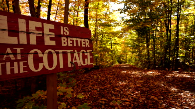 cottage in the woods - cottage stock videos & royalty-free footage