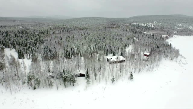 AERIAL: Cottages in snowy woods