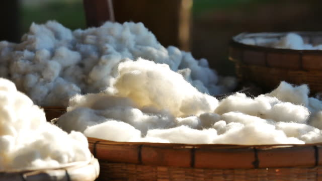 cotton from silkwarm in basket. - cotton stock videos & royalty-free footage