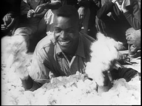 cotton pickers from eight southern states compete in annual cotton picking championship / wide shot of picking / montage of closeups of hands and... - 1942 stock videos & royalty-free footage