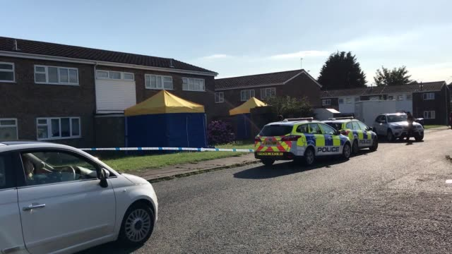 counter-terrorism police are investigating after grenades, a fake gun and various chemicals were found in a home in suffolk. a 59-year-old man has... - ローストフト点の映像素材/bロール