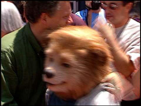 country bears at the premiere of 'the country bears' at the el capitan theatre in hollywood california on july 21 2002 - el capitan theatre stock videos & royalty-free footage