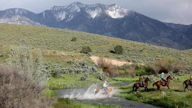 land-cowboys und cowgirls fahrt durch einen bach - cowboyhut stock-videos und b-roll-filmmaterial