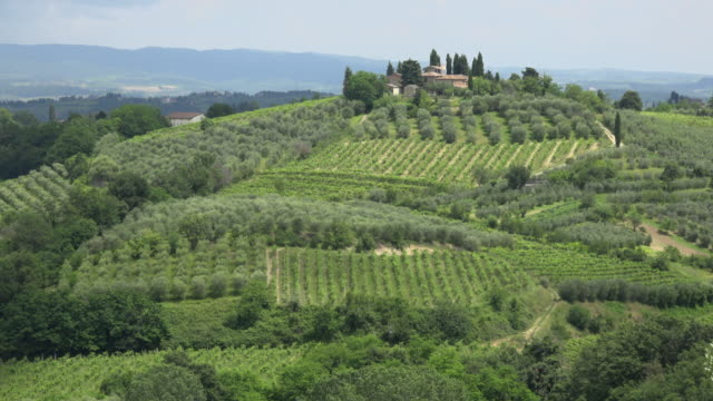 country house on vineyard in tuscany hills - siena italy stock videos and b-roll footage