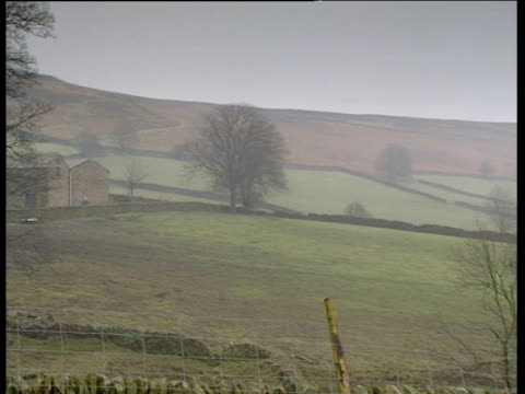 country landscape pan right to farmer at gate with sheepdog - landscape scenery点の映像素材/bロール