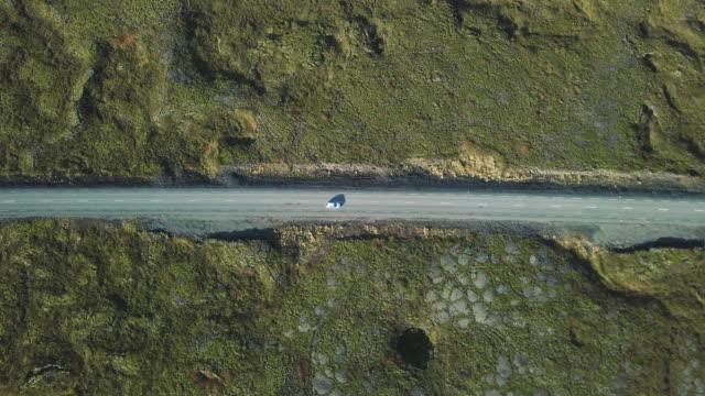 vidéos et rushes de route de campagne, vu de dessus - mousse végétale