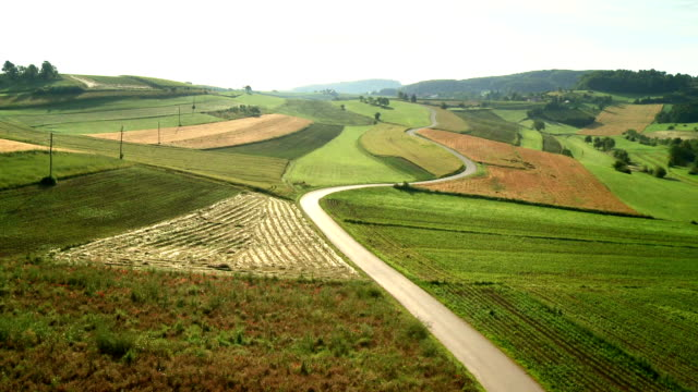 aerial country road between fields - rolling landscape stock videos & royalty-free footage