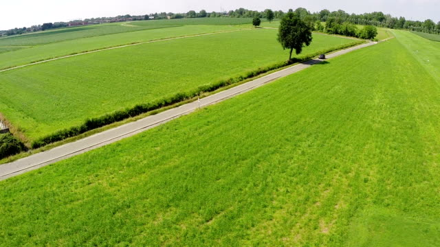 country road in a grass field - hd 25 fps stock videos & royalty-free footage