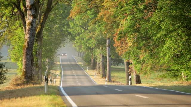 vídeos de stock e filmes b-roll de country road in early autumn - plano picado