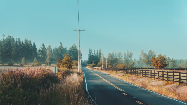 country road, misty sunrise - telephone pole stock videos & royalty-free footage