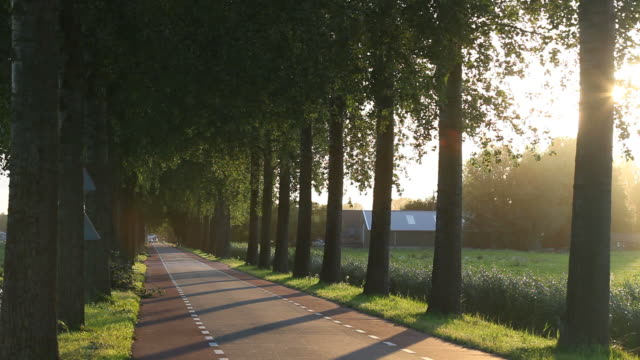 Country Road Near Amsterdam, The Netherlands