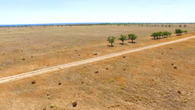 AERIAL: Country road through steppe