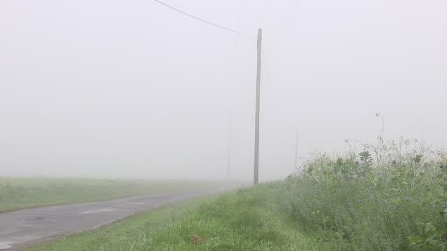 vídeos de stock, filmes e b-roll de country road with fog - sc47