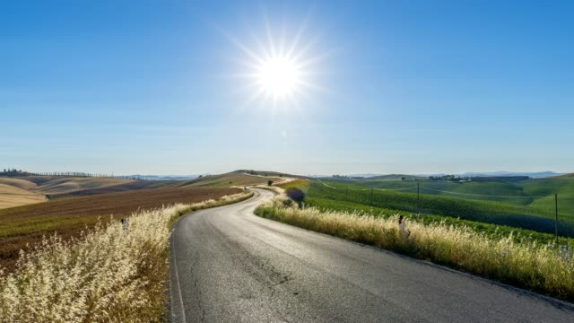 Country road with sun in the summer, Monteroni d'Arbia, Provinz Siena, Tuscany, Italy