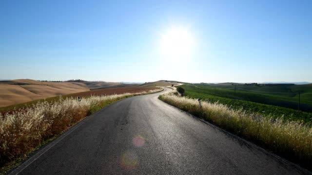 country road with sun in the summer, monteroni d'arbia, provinz siena, tuscany, italy - viewpoint stock videos & royalty-free footage