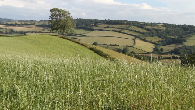 country side - british culture stock videos & royalty-free footage