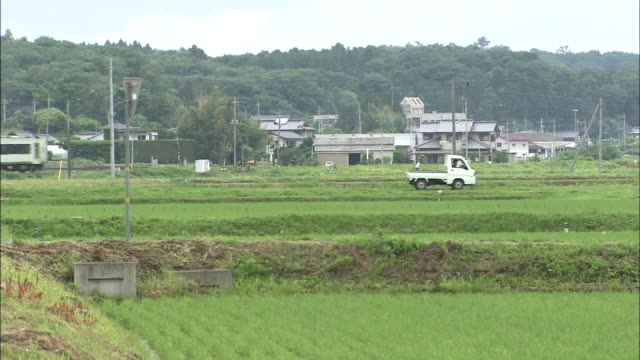 country view with rice paddy - non urban scene stock videos & royalty-free footage
