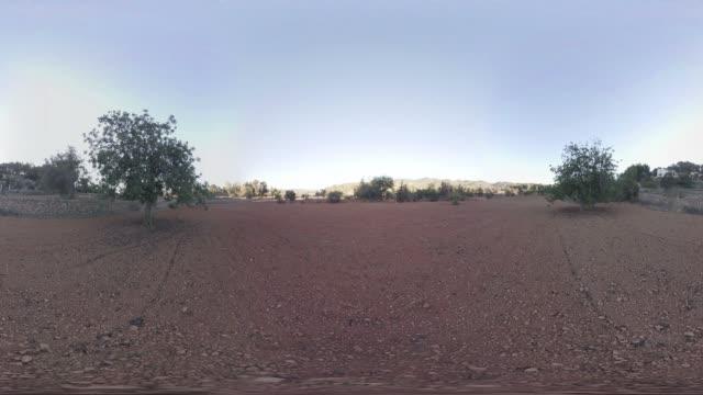 Countryside in Ibiza
