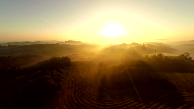 aerial countryside in misty sunset - vineyard stock videos & royalty-free footage