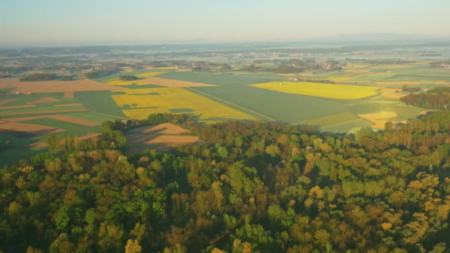 aerial countryside in morning sun - four seasons stock videos & royalty-free footage