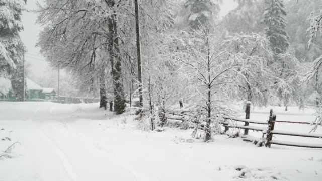 countryside street under snowfall - power cut stock videos & royalty-free footage