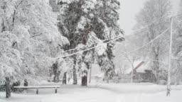 Countryside street under snowfall