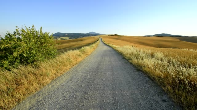 countryside with gravel road and wheat fields in summer, val d'orcia, siena province, tuscany, italy - 散歩道点の映像素材/bロール