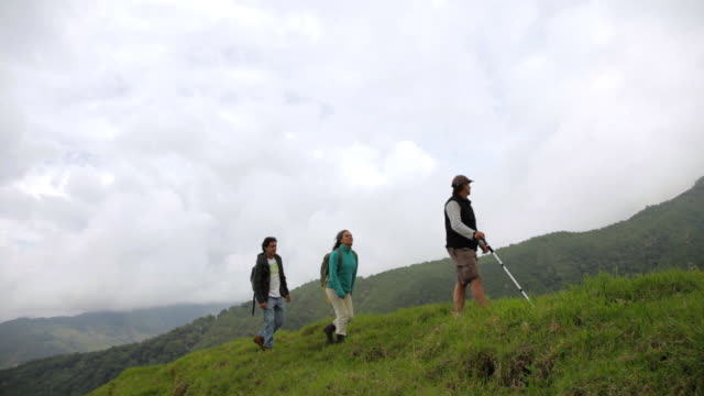 ms ts couple and tour guide hiking on andes mountains / salento, quindio, colombia   - guidance stock videos & royalty-free footage